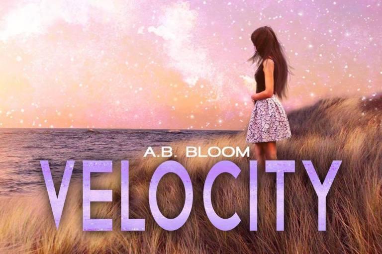 Velocity1.jpg