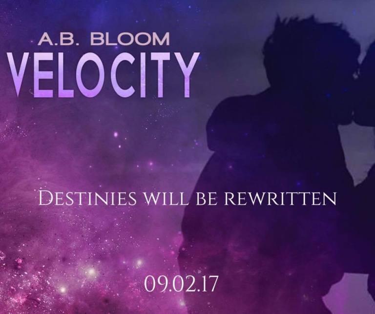 Velocity3.jpg
